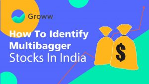 How to identify multibagger
