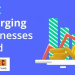 IDFC EMERGING BUSINESS NFO